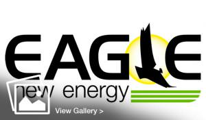 Logo design for Eagle to fit sister companies Multifab and EAG