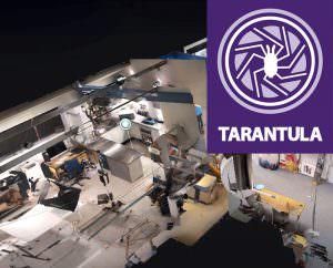 Tarantula - Virtual tours in Norwich