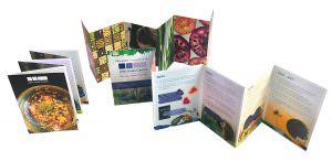 Concertina leaflet design and print
