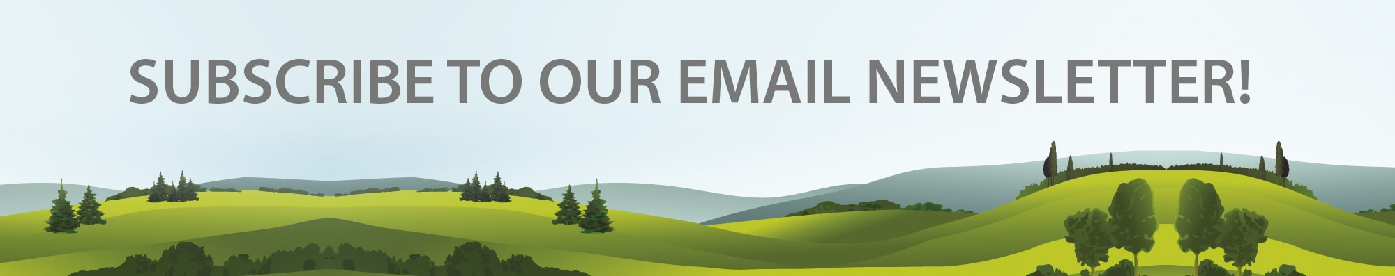 Subscribe to our email newsletter banner